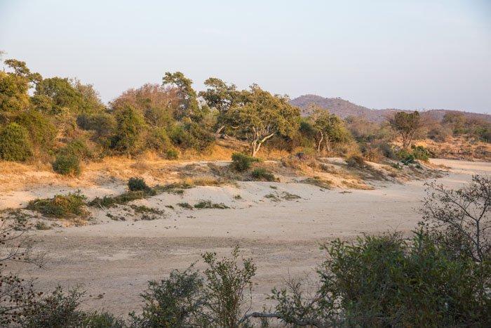 Timbavati River Kruger