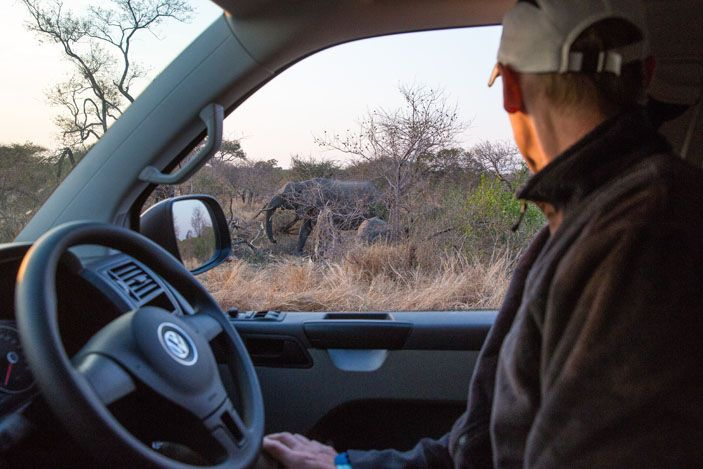 Tim's View in Kruger