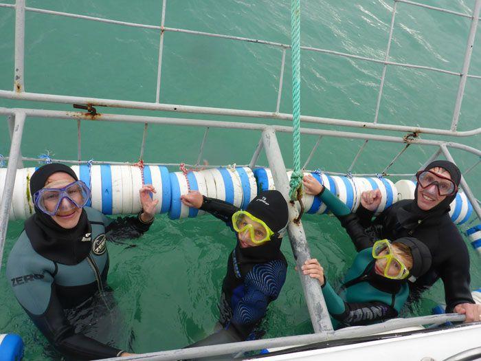 Earth Trekkers Shark Diving