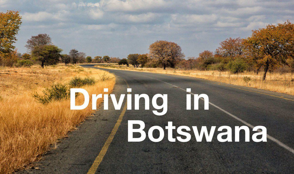 Driving in Botswana | Earth Trekkers