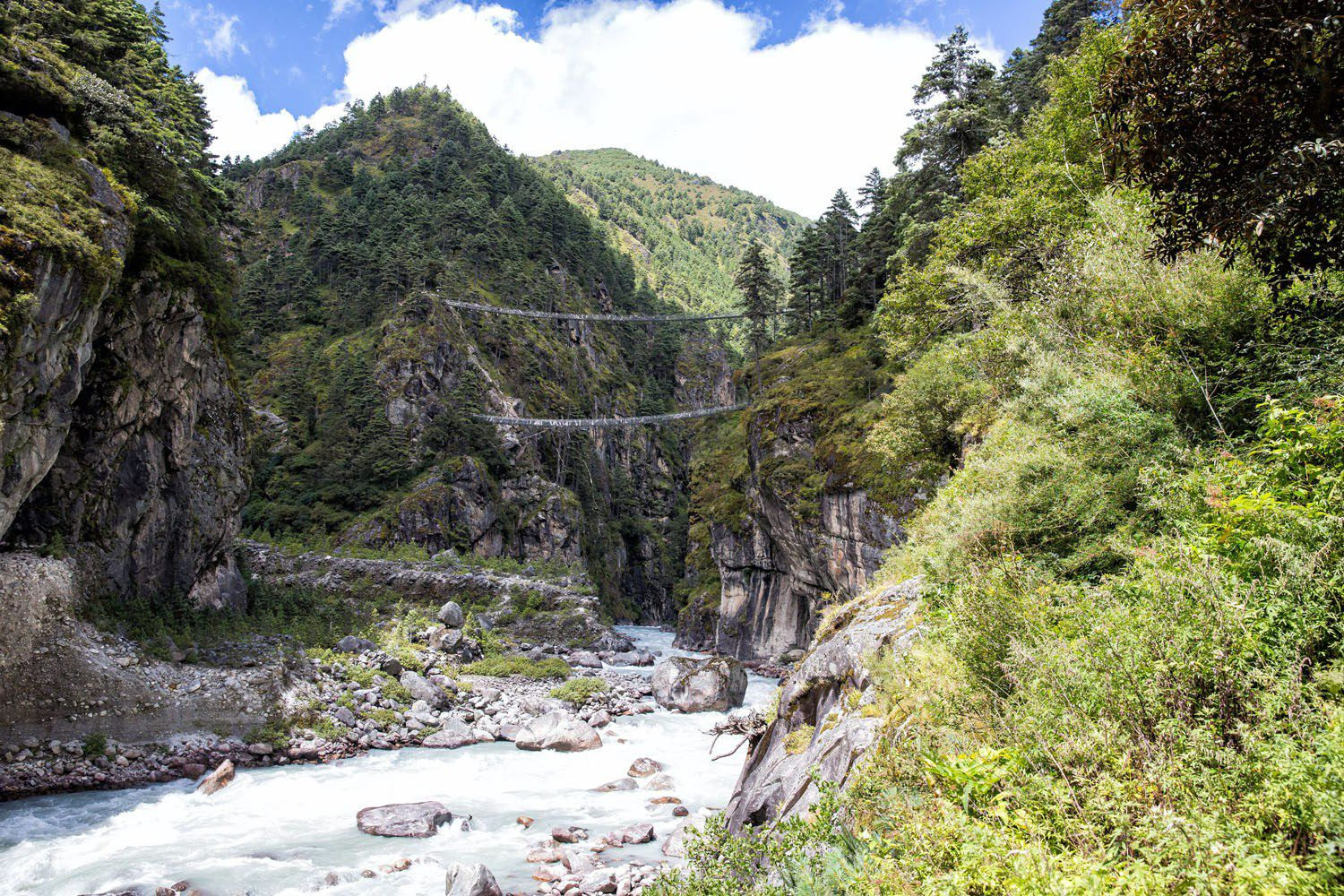 EBC Suspension Bridge