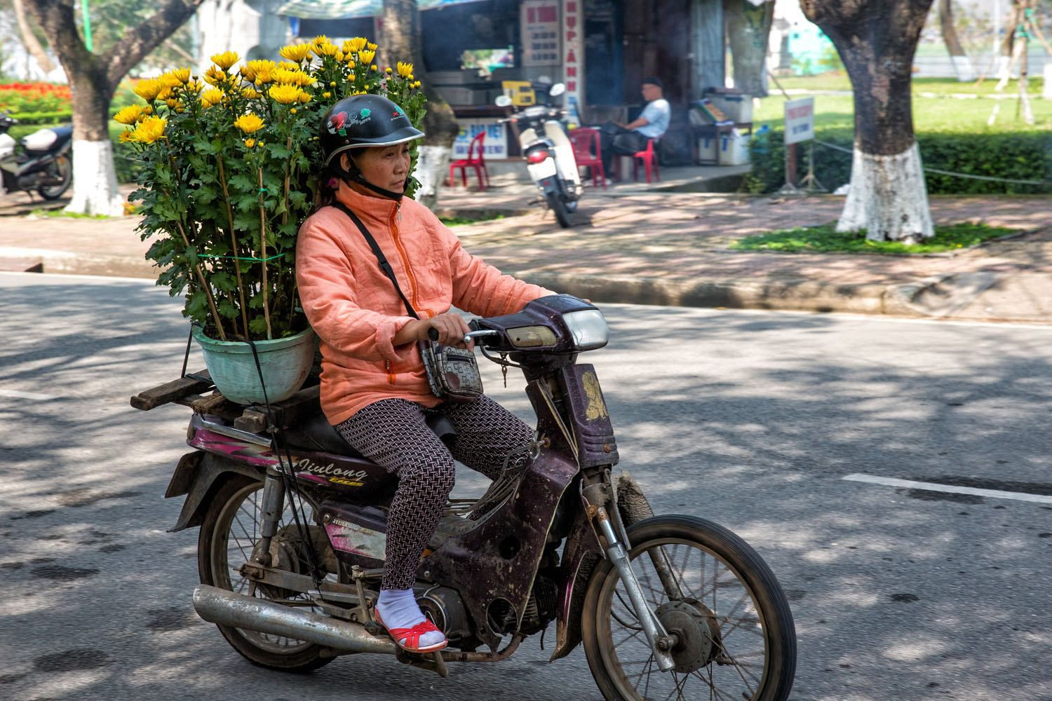 Motorbike with Chrysanthemums