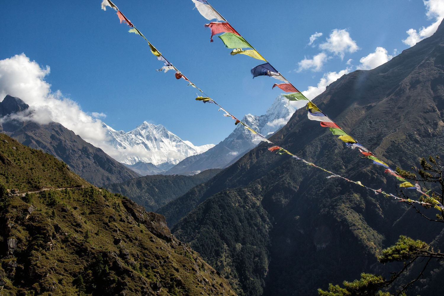 Prayer Flags in the Himalayas