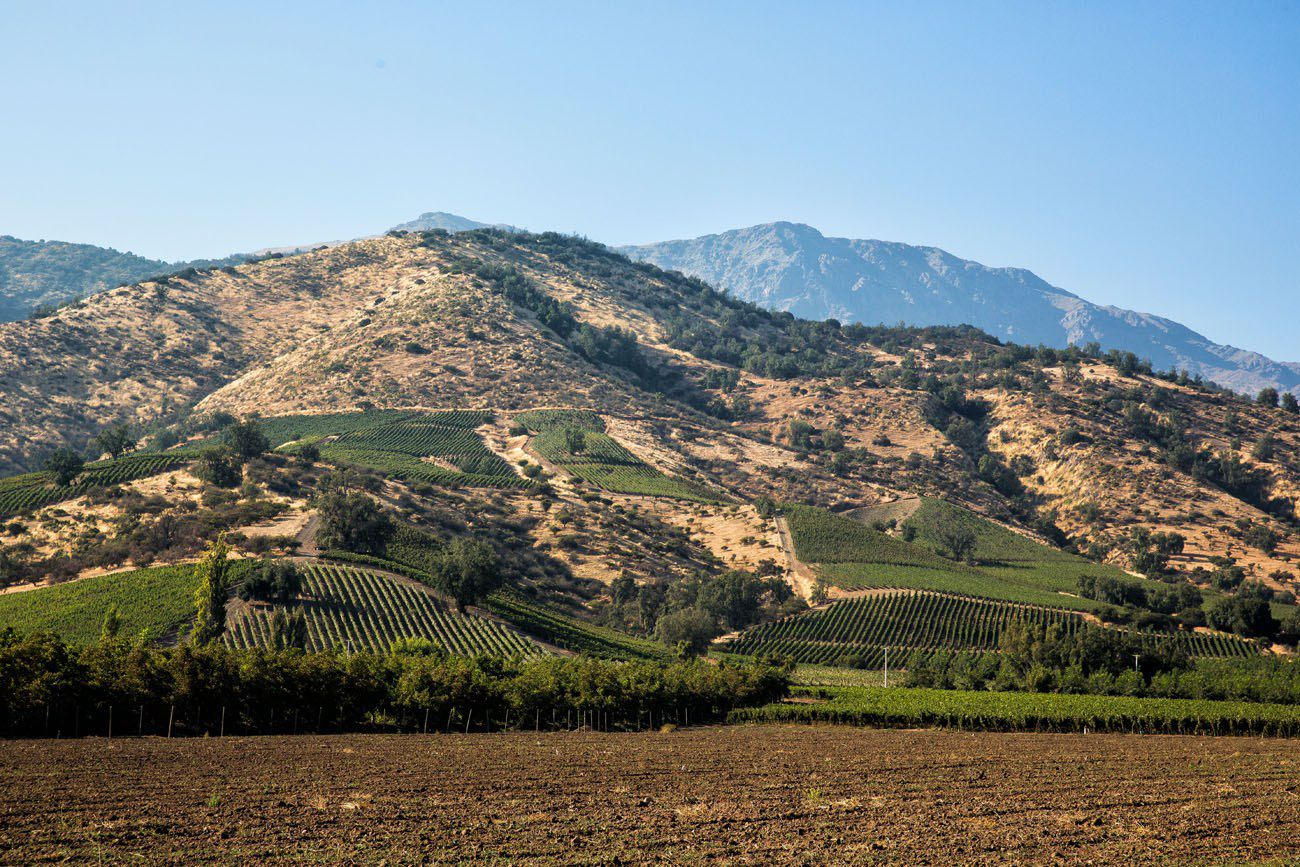 Hills of Maipo Valley
