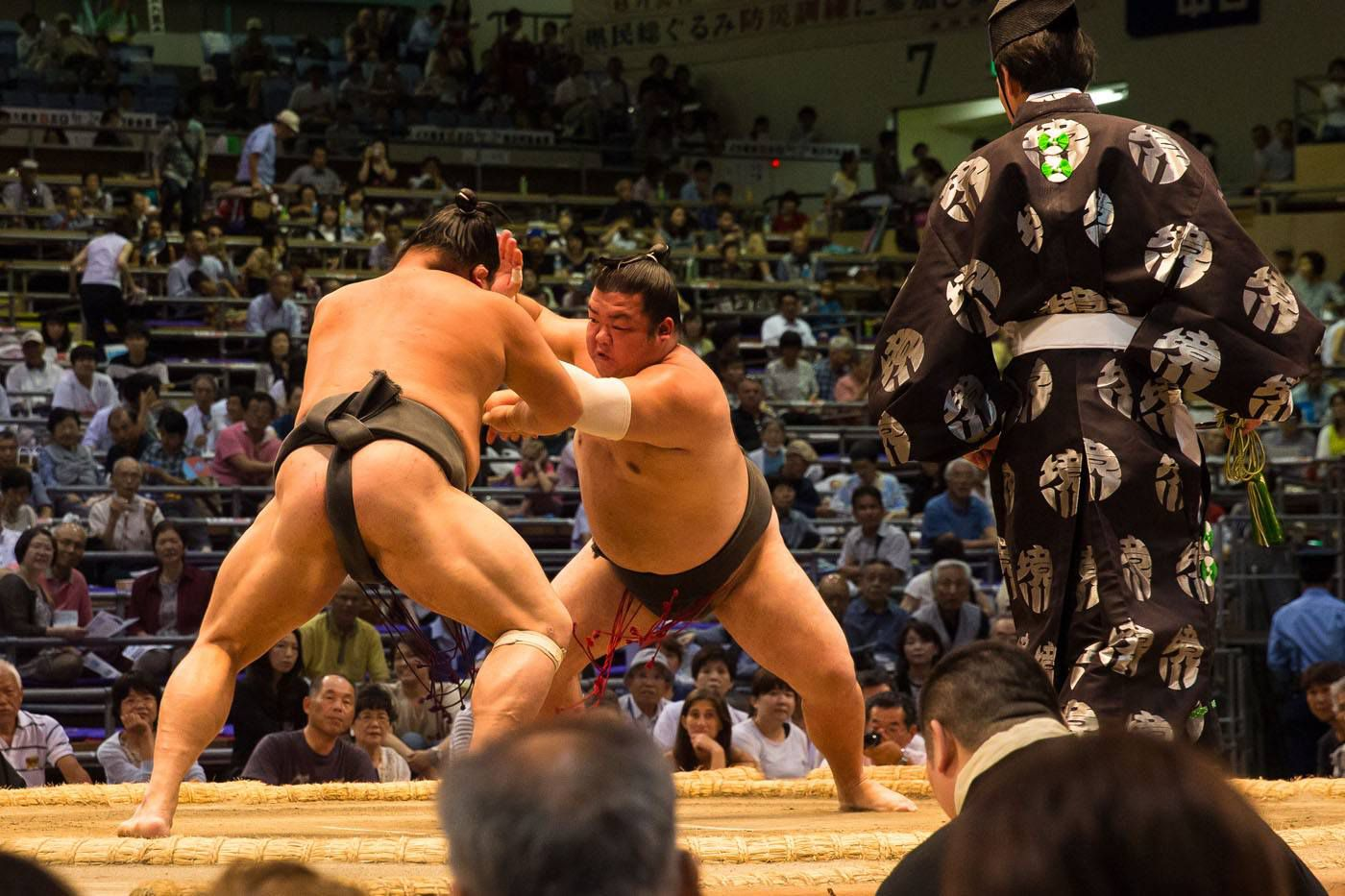 How to Watch Sumo Wrestling Japan