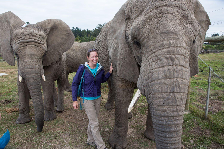 Julie Rivenbark and Elephants