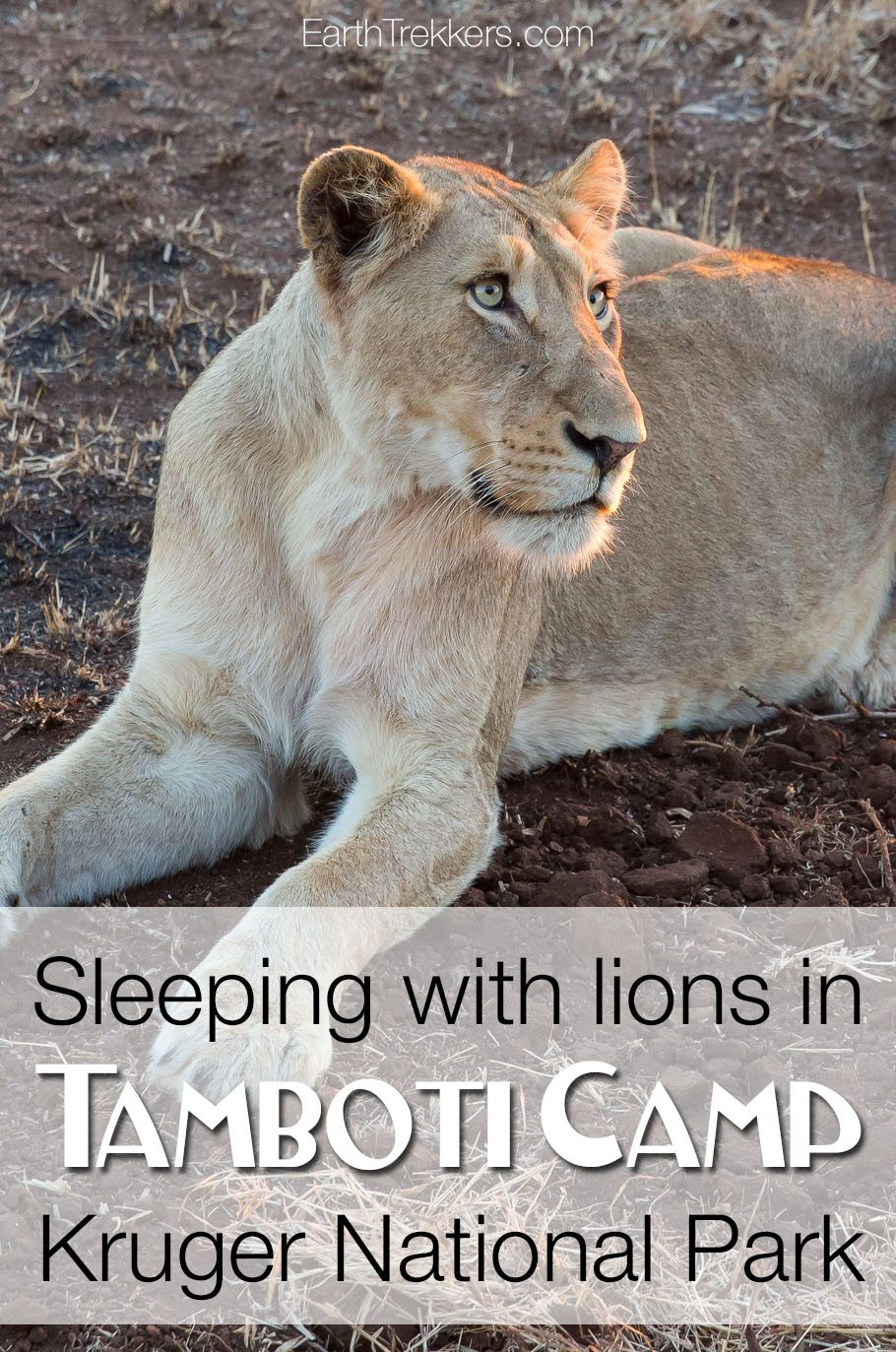 Tamboti Camp Kruger National Park