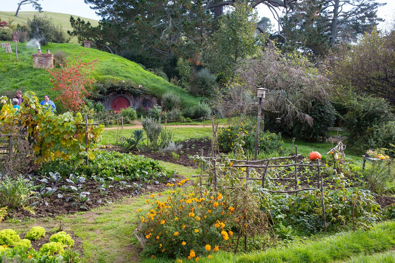 View of Hobbiton