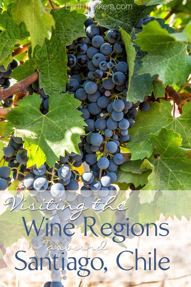 Visiting the Wine Regions Santiago Chile