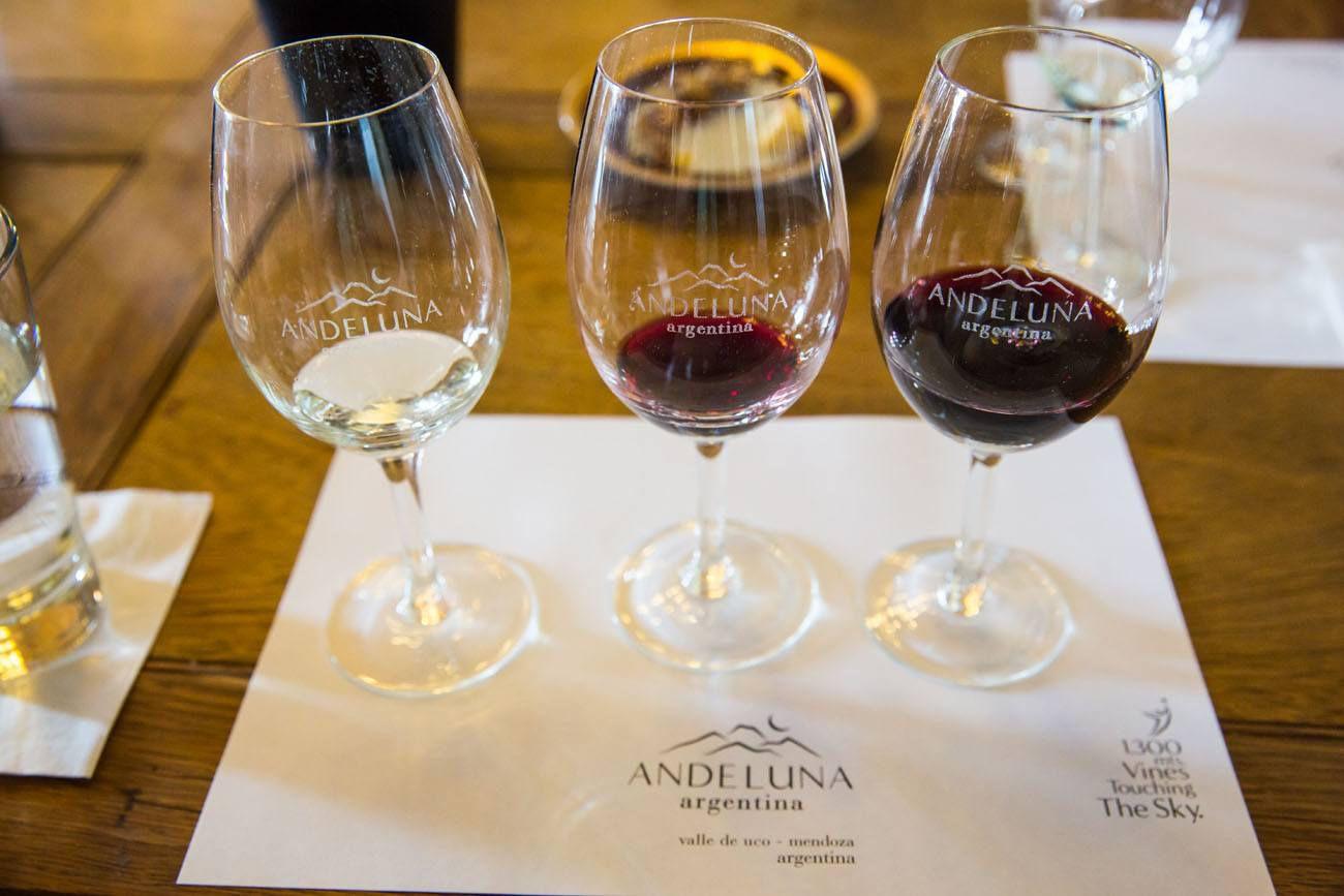 Andeluna Wine Tasting