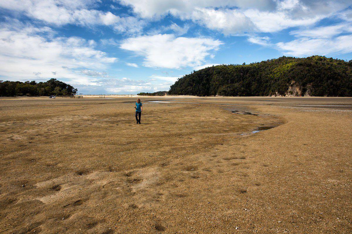 At Abel Tasman