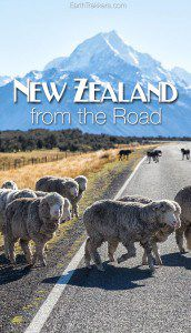 New Zealand from the Road