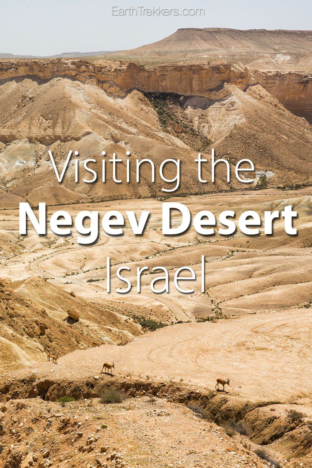 Things to do Negev Desert Israel