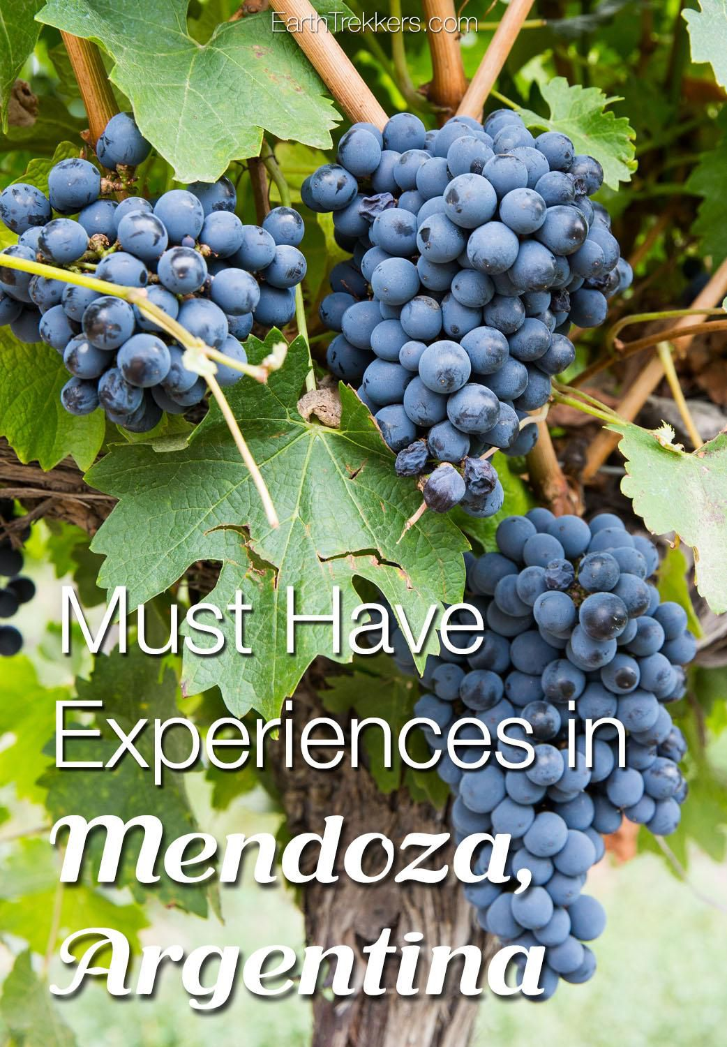 Best Things to do in Mendoza Argentina