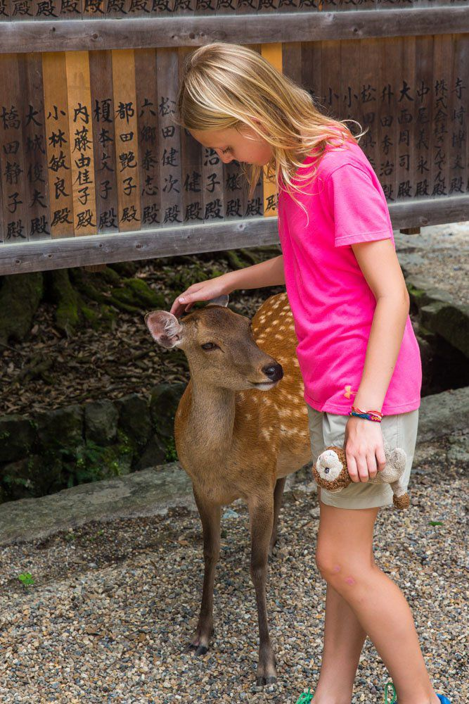 Nara Deer and Kids