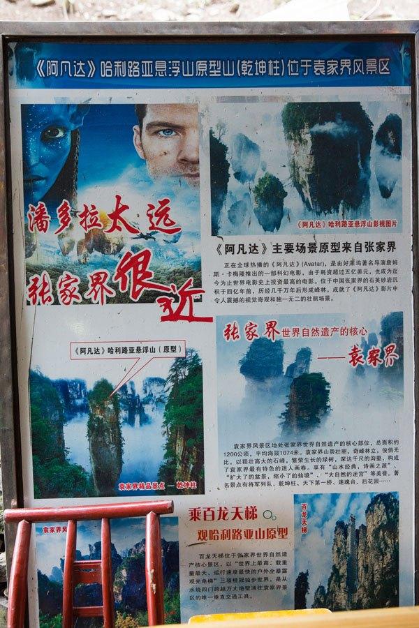 Avatar in China