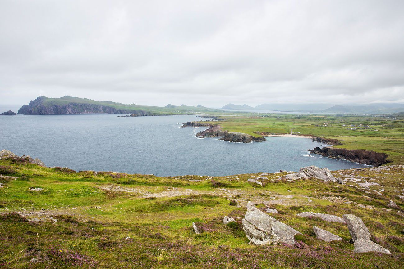 Dingle View