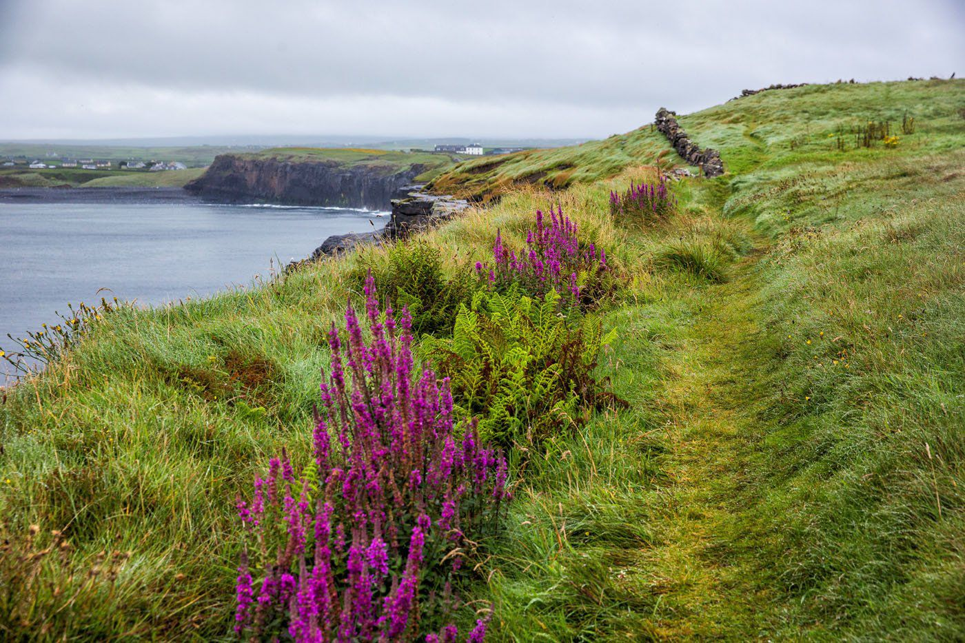 Walking the Cliffs of Moher from Doolin