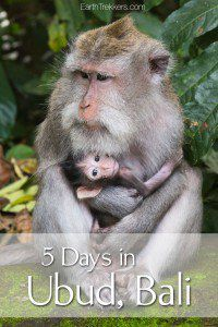 5 days in Ubud Bali