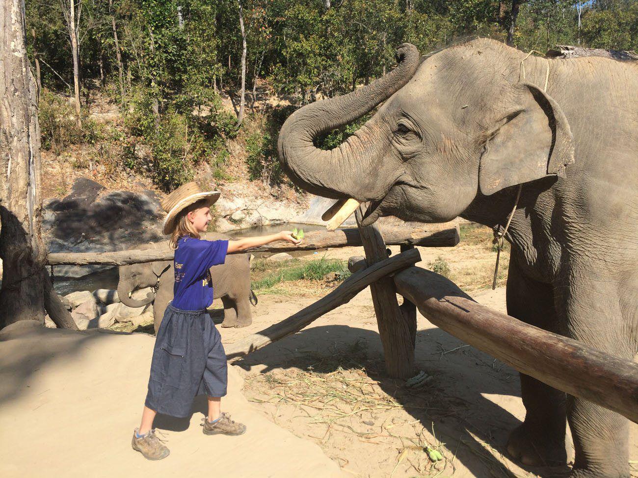 Kara Rivenbark with elephant