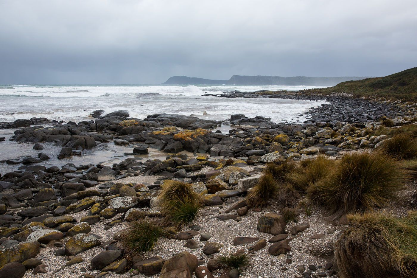 Bruny Coastline