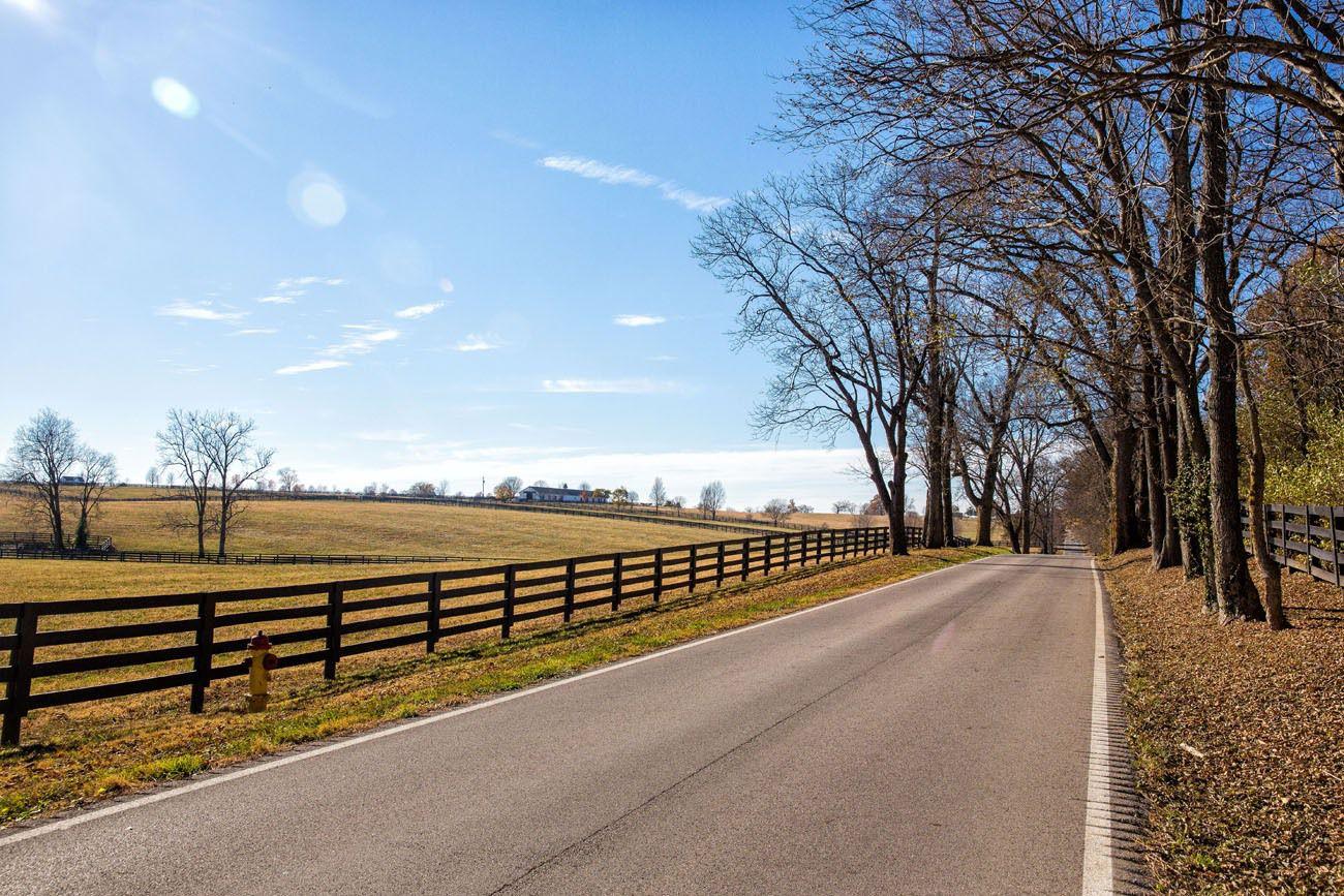 Horse farms Kentucky