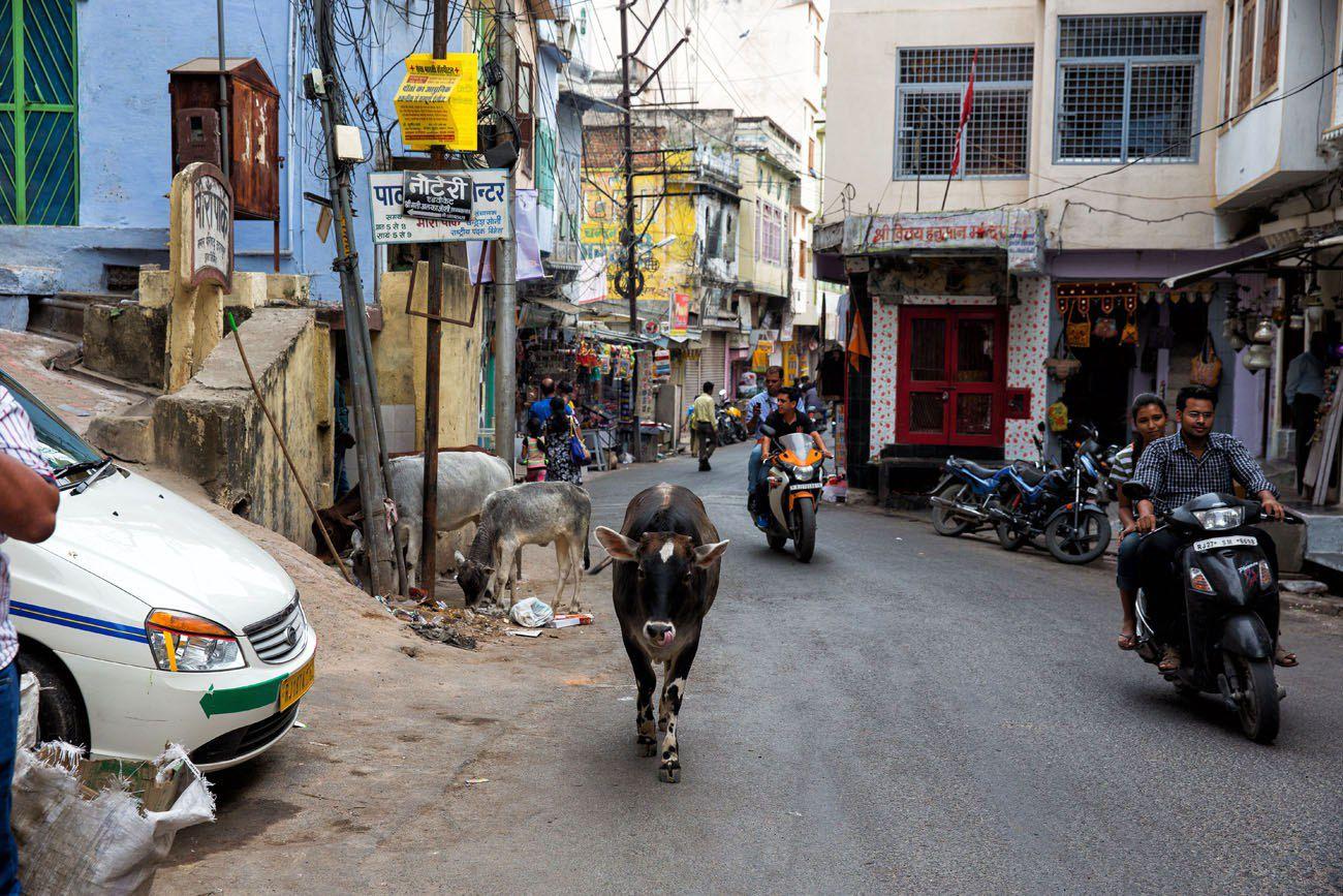 Walking through Udaipur