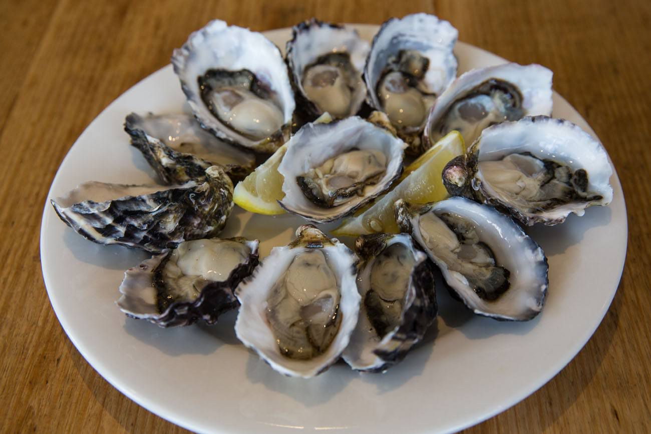 Bruny oysters