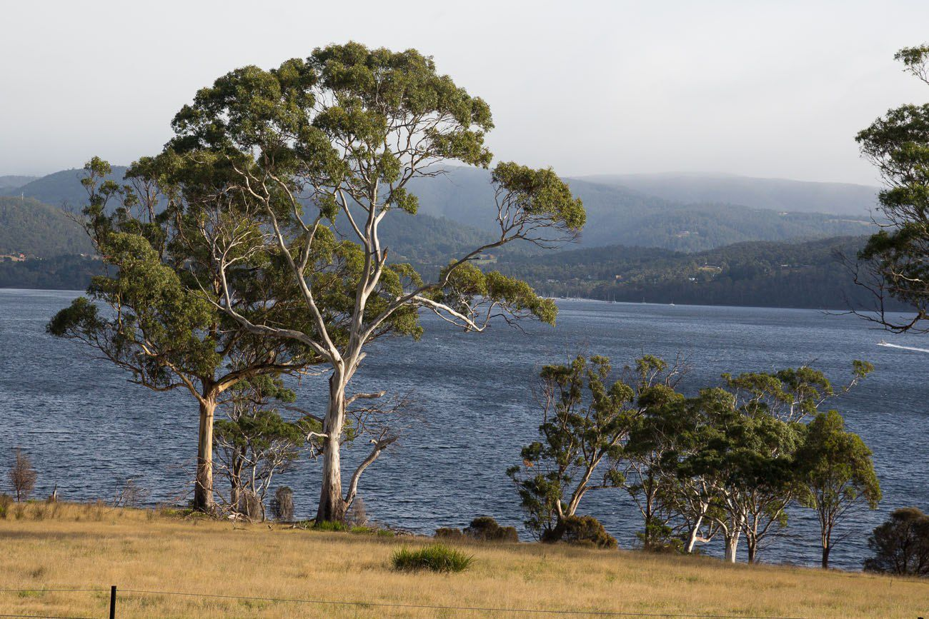 Driving Bruny Island