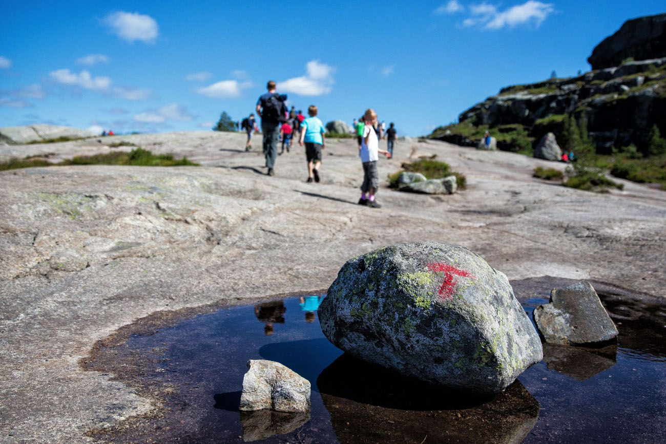How to Hike to Pulpit Rock in Norway | Earth Trekkers