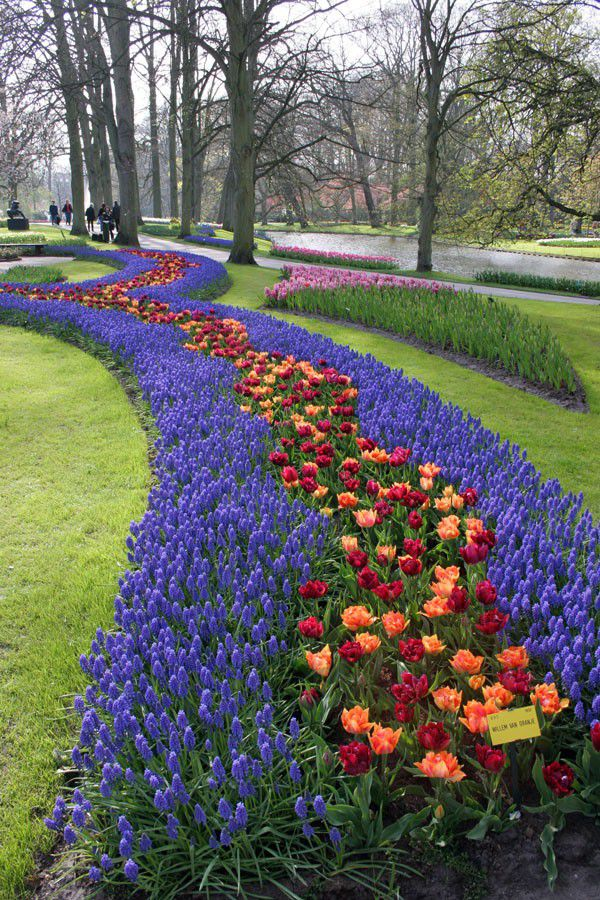 Keukenhof 10 days in Europe