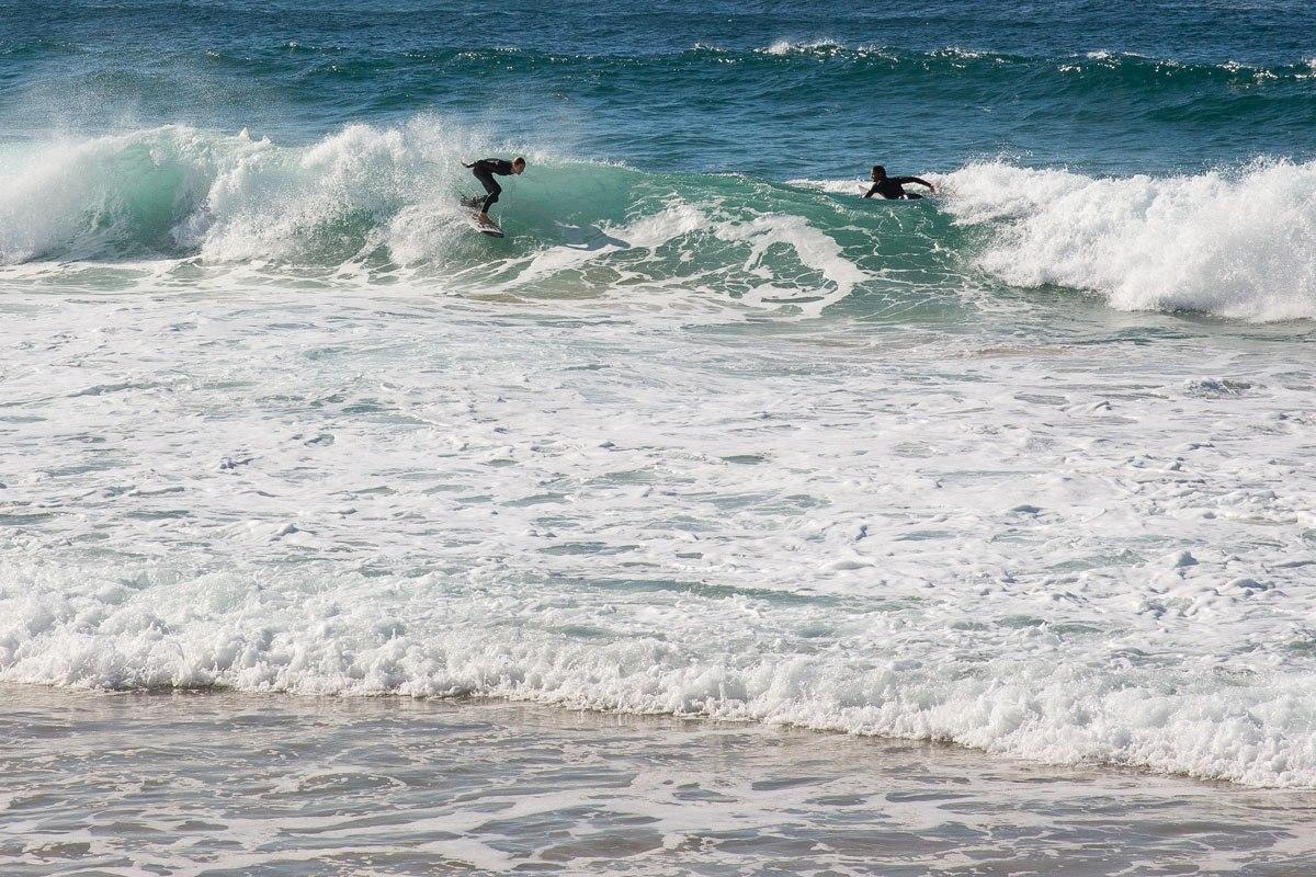Coogee Beach surfers