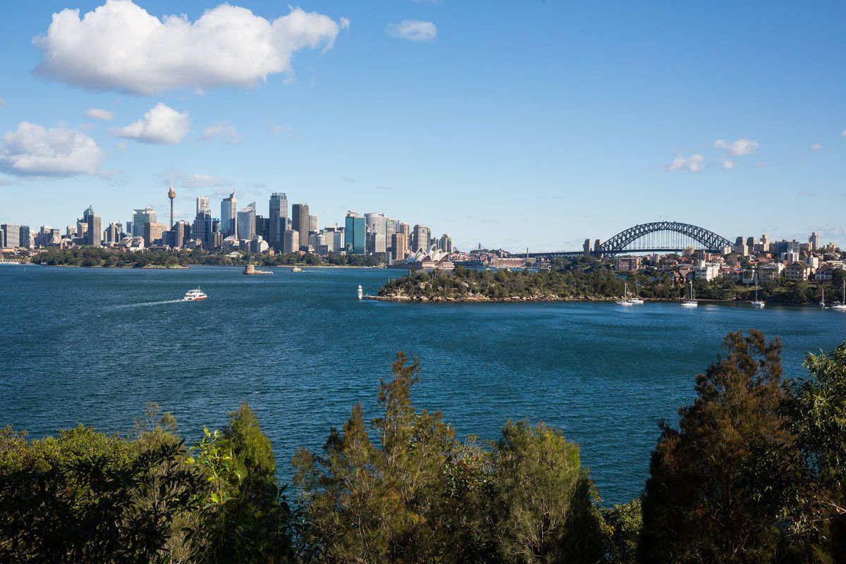 Sydney from the Zoo