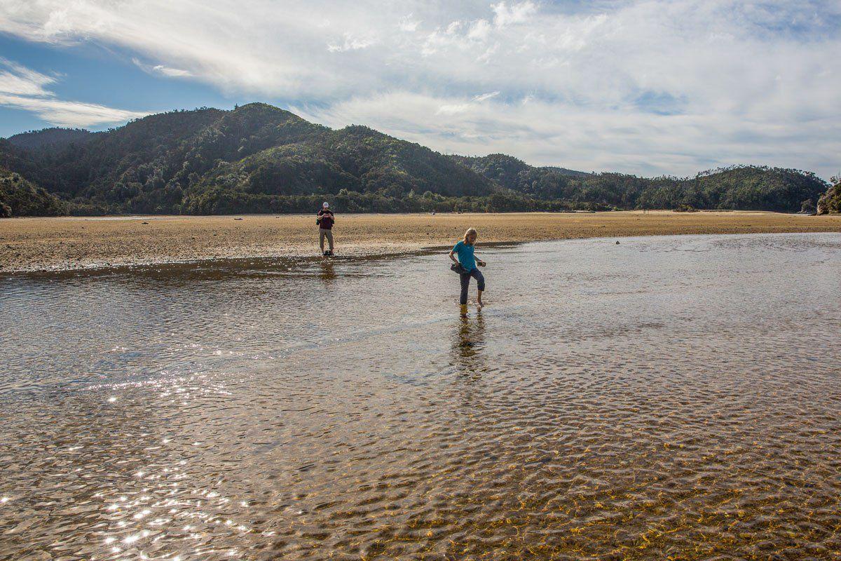 Torrent Bay Low Tide