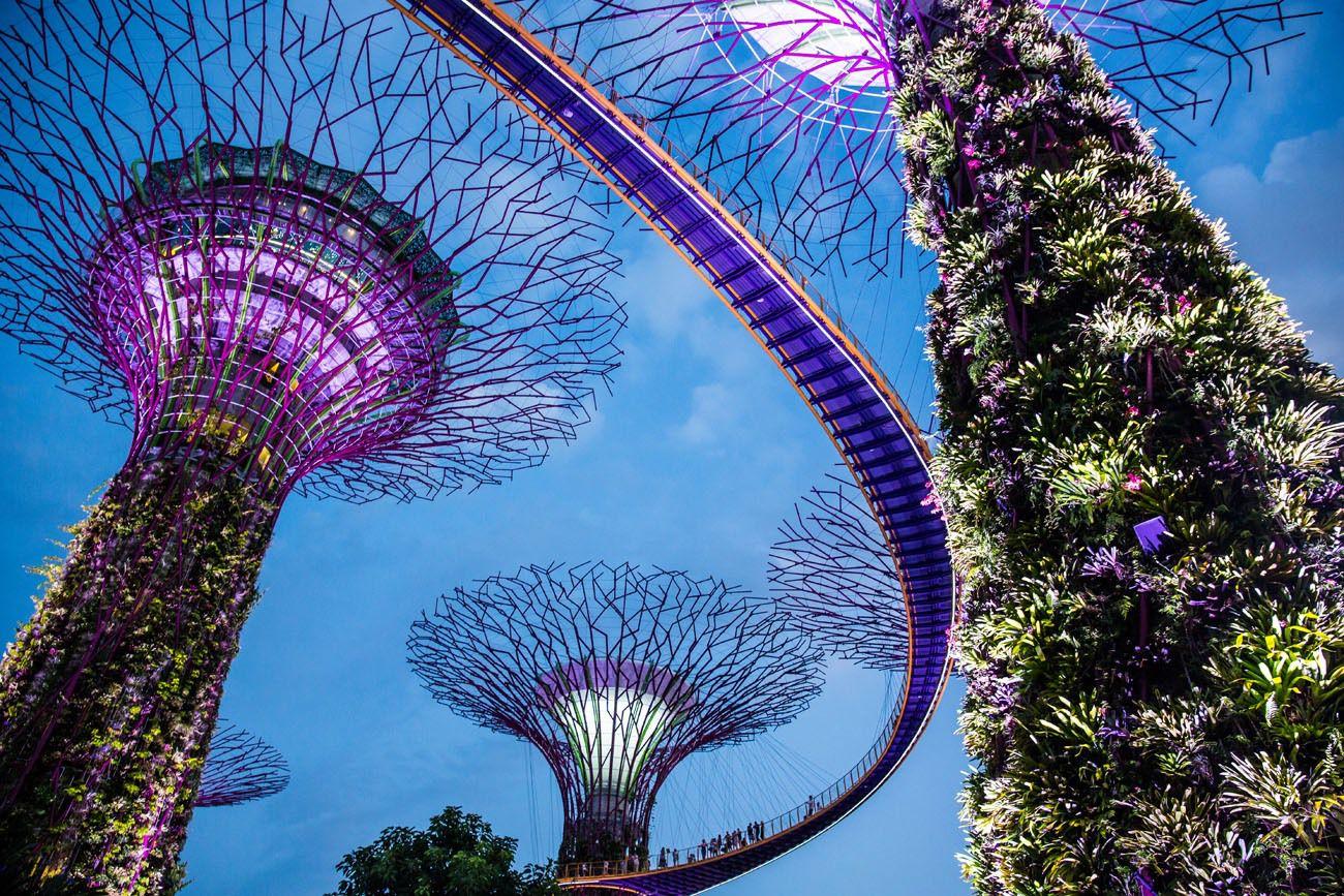 Singapore Gardens
