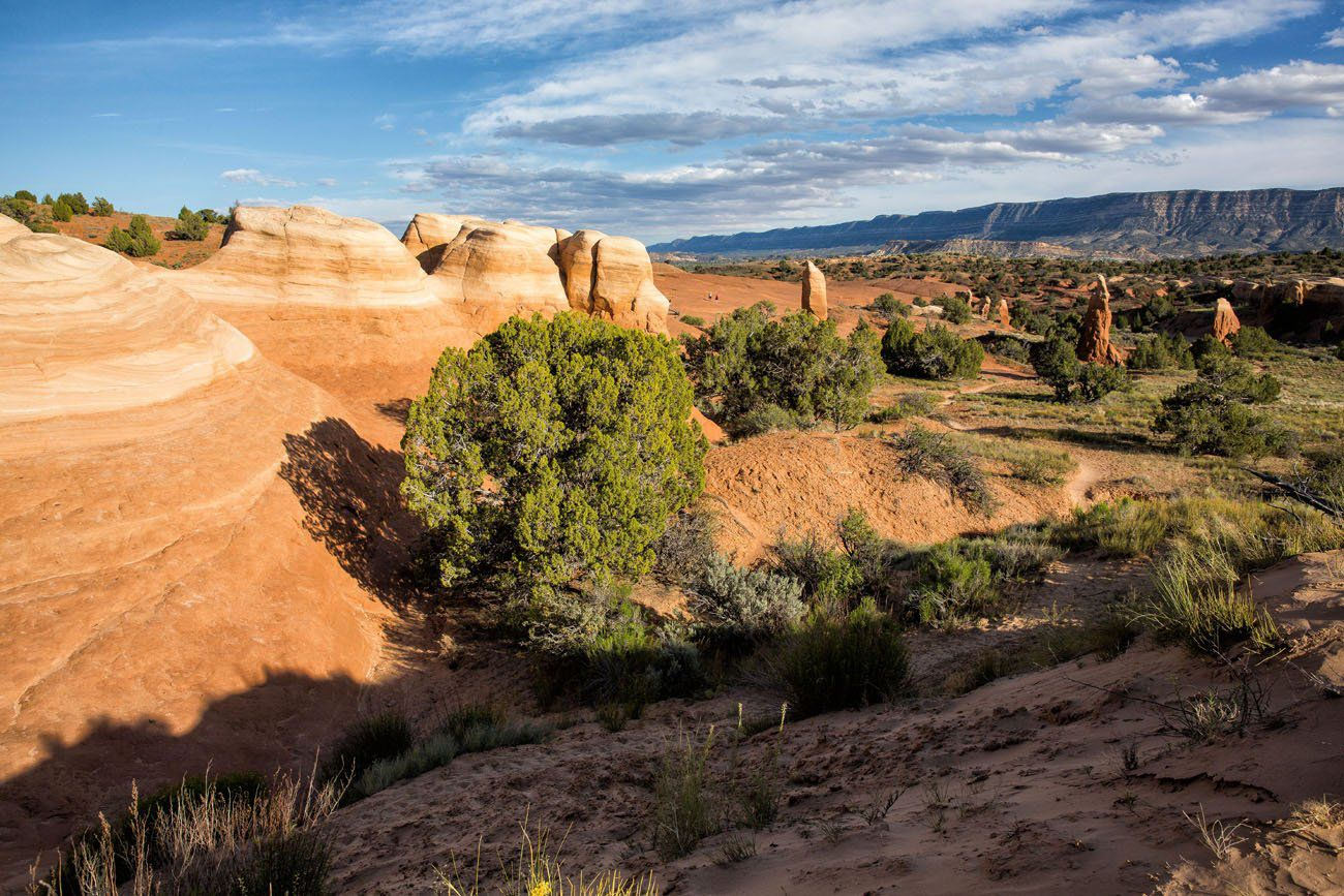 5 Reasons Why You Should Visit Devils Garden in Grand Staircase ...