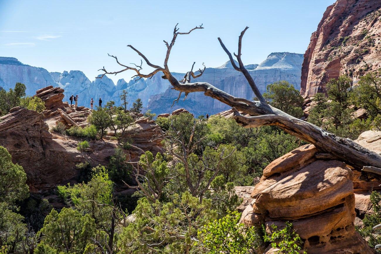 Hiking Canyon Overlook