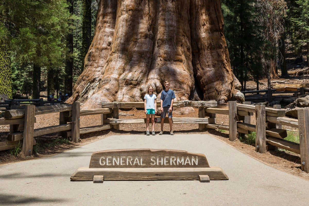 One Day Itinerary For Kings Canyon And Sequoia National