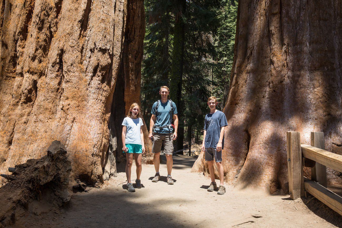 Tyler Kara Tim in Sequoia