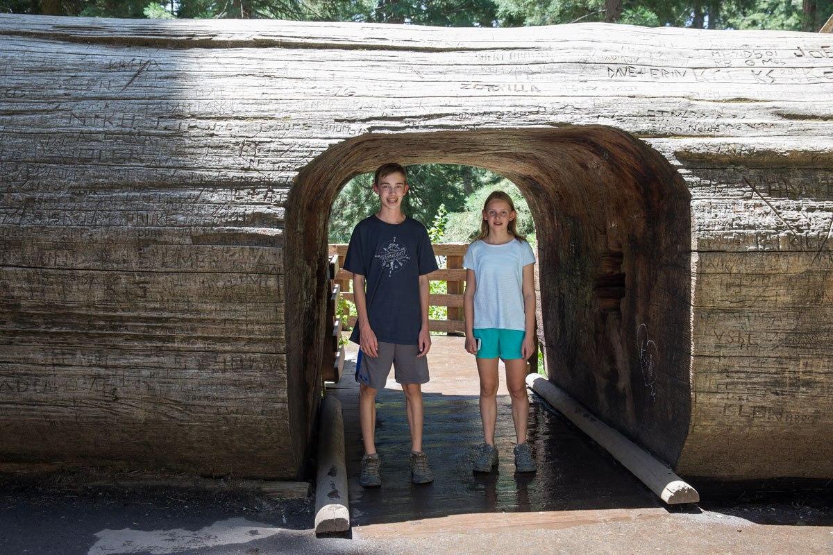 Tyler and Kara Sequoia