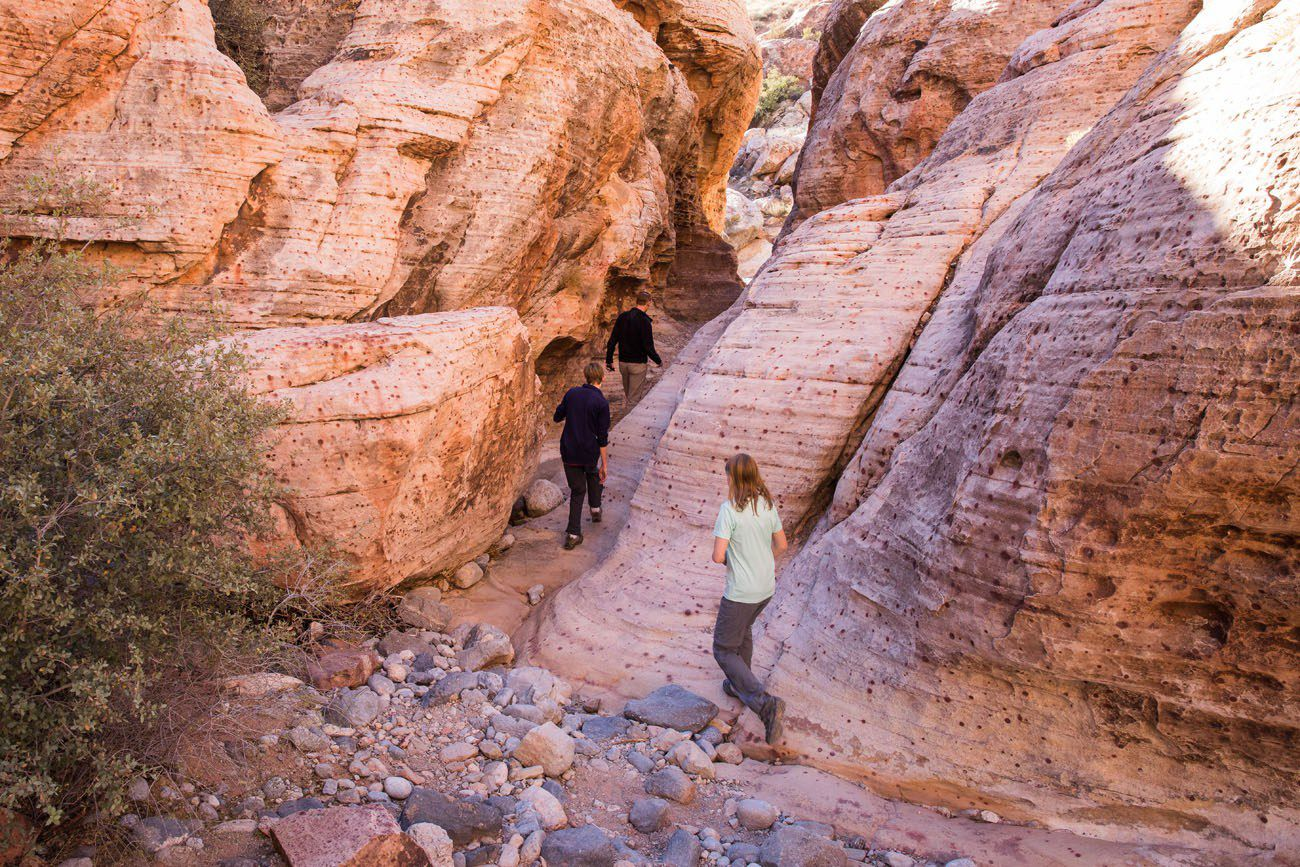 Two Fun, Short Hikes to do at Red Rock Canyon, Las Vegas