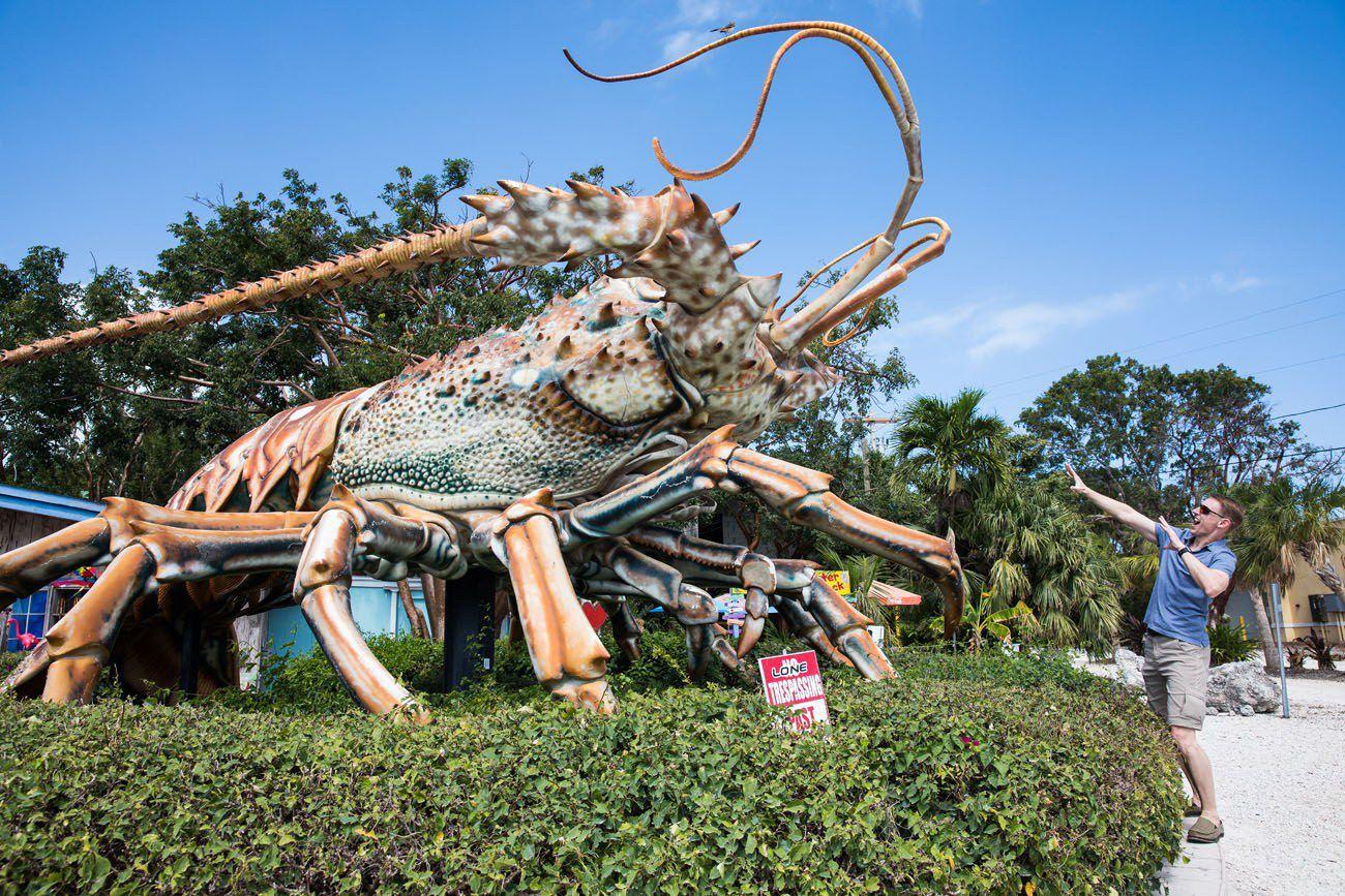 Rain Barrel Lobster