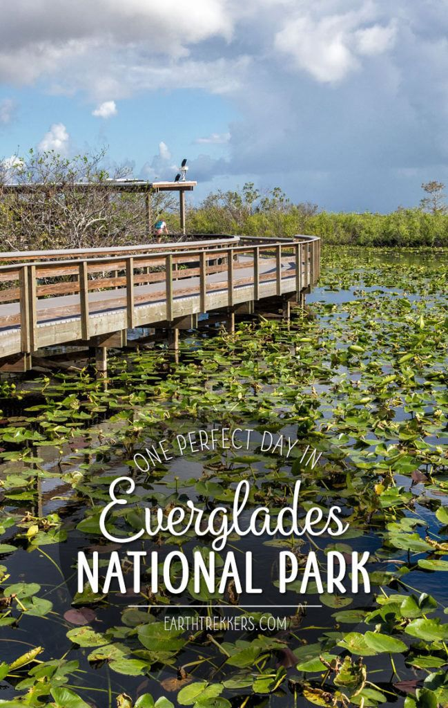 Everglades One Day Itinerary