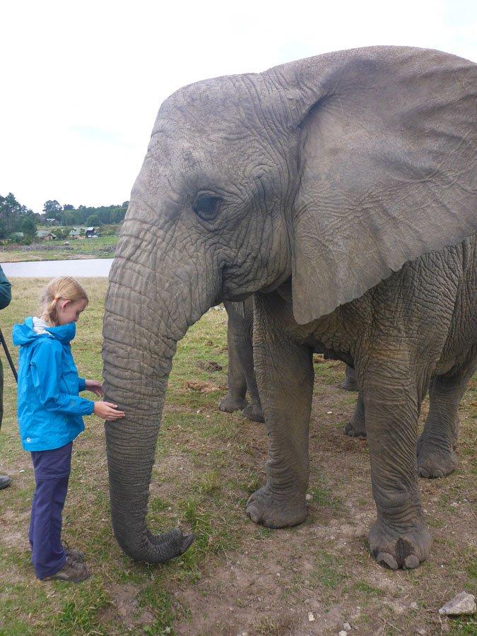 Kara and elephant