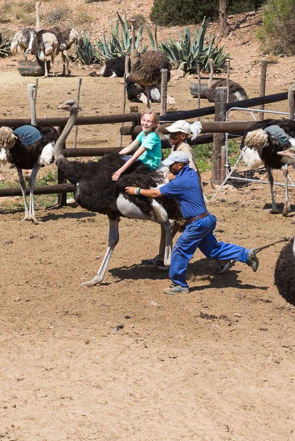 Kara on an ostrich