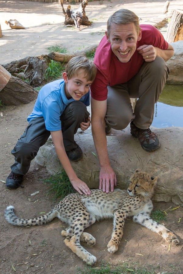Tim Tyler Cheetah