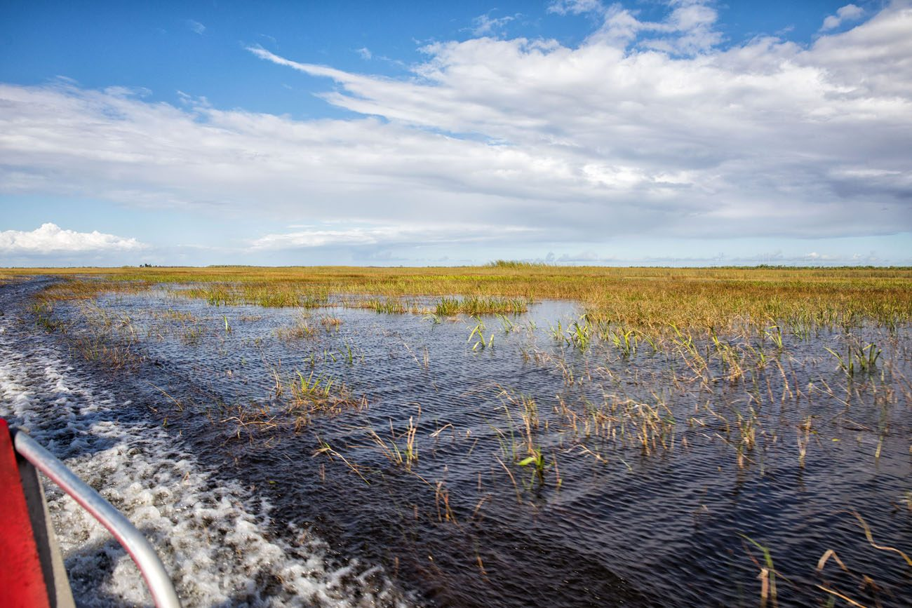 View of Everglades