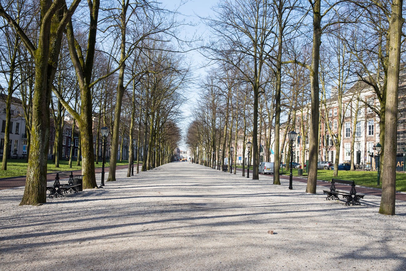 Lange Voorhout the Hague