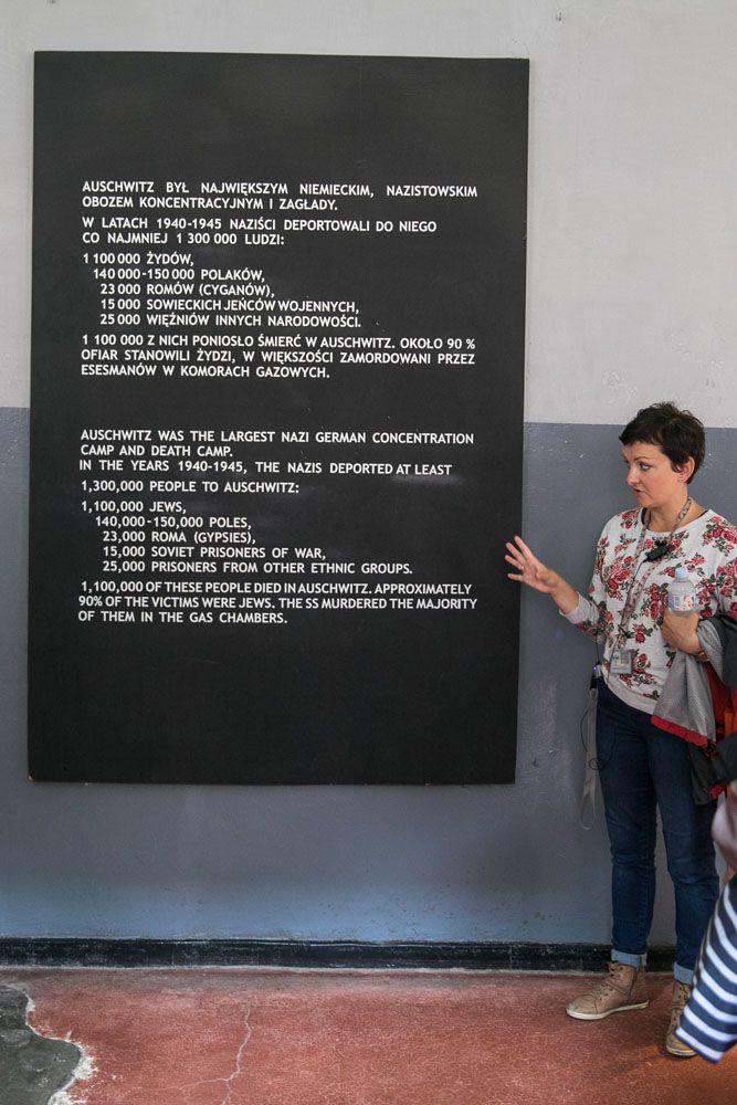 Auschwitz Statistics