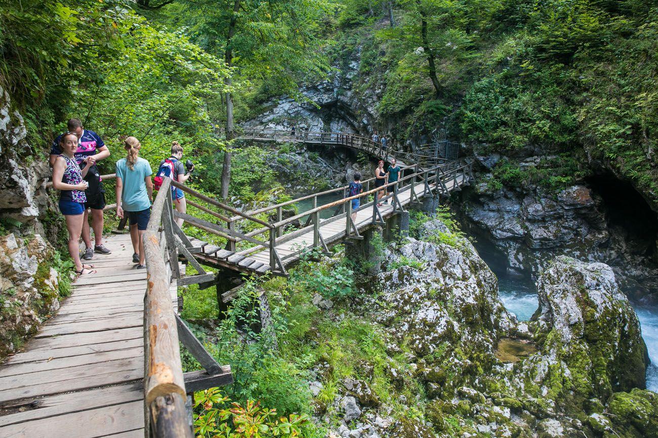 Entering Vintgar Gorge